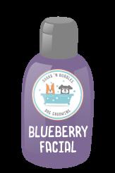 Blueberry Facial