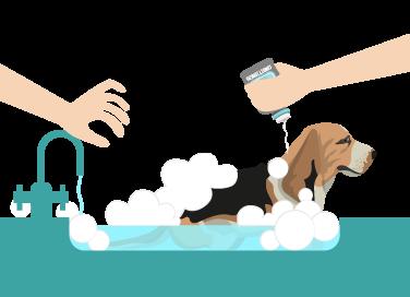 We Bath Grooming